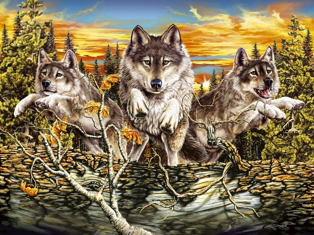 wolf wallpaper yorkshire - photo #17
