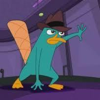 perry the platypus.