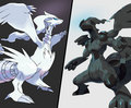 pokemon black and white Reshiram and Zekrom
