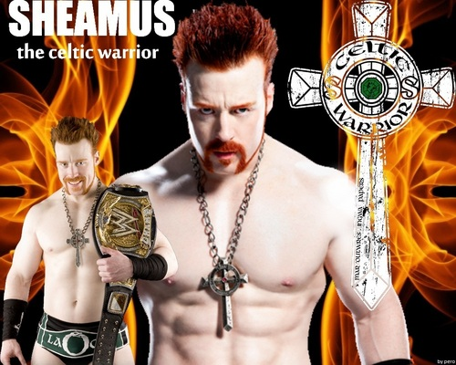 Sheamus wallpaper called the celtic warrior.
