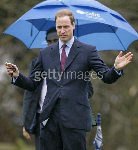 Prinz William Hintergrund containing a business suit titled william