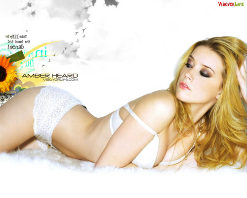 amber heard wallpaper with a bikini, attractiveness, and skin entitled Amber