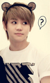 Cute Bear Ears - yang-yoseob photo