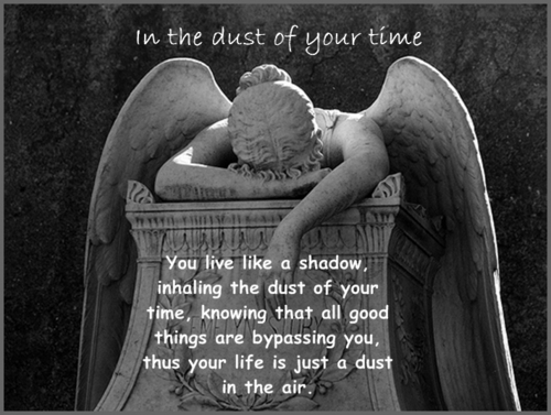 In the dust of your time