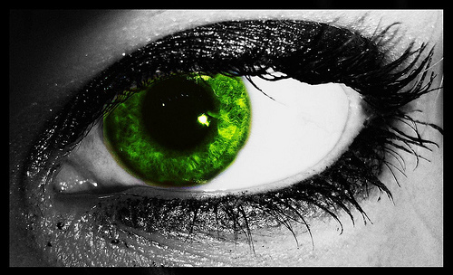 People With Green Eyes wallpaper called eye