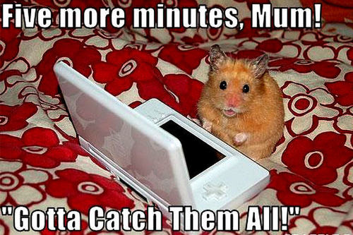 mouse funny