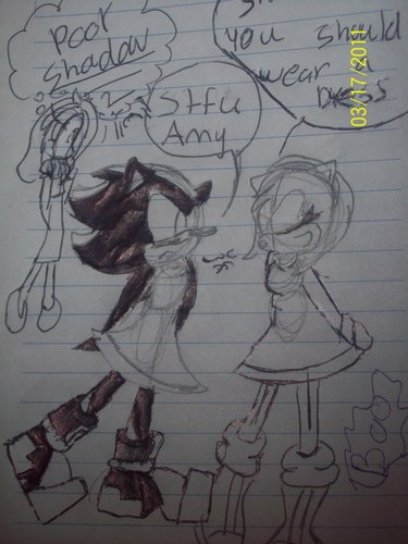 poor shadow why amy