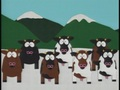 2x13 Cow Days - south-park screencap