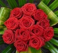 A Dozen Red Roses for Susan - peterslover photo