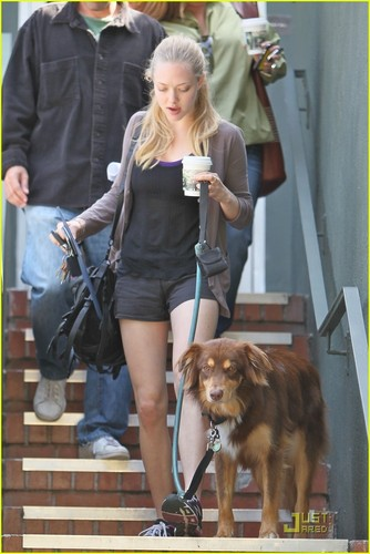 Amanda Seyfried: Coffee & Dog Run