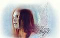 supernatural - Anna wallpaper
