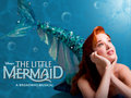 Ariel wallpaper - the-little-mermaid-on-broadway wallpaper