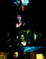 Bellatrix Lestrange - harry-potter-vs-twilight photo