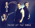 Brendon and Spencer - panic-at-the-disco wallpaper