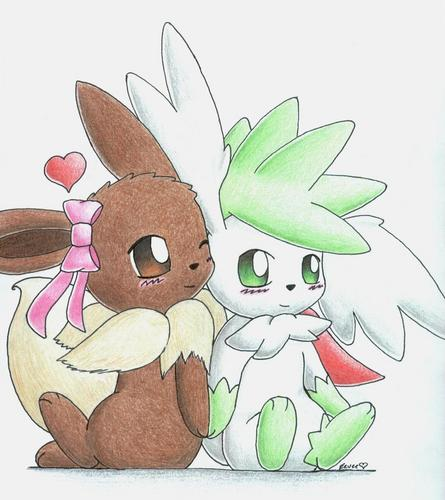 Eevee and Shaymin