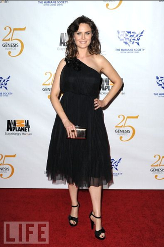 Emily at the 25th Annual Genesis Awards