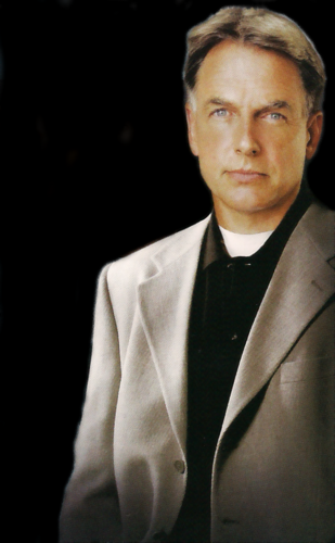 NCIS wolpeyper with a business suit entitled Gibbs
