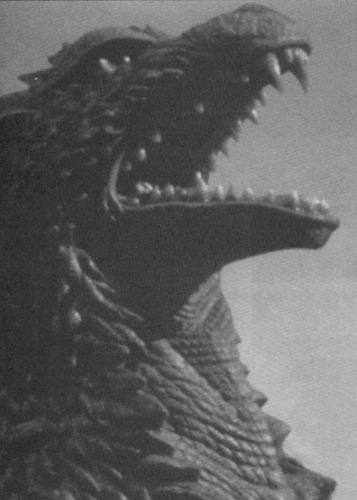 Godzilla 壁紙 called Godzilla 1954-2004