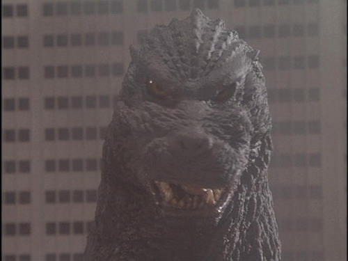Godzilla 壁紙 titled Godzilla 1954-2004