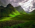 Green Fields - green wallpaper