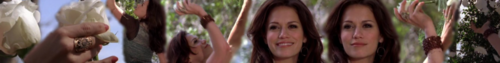 Haley James Scott Banner
