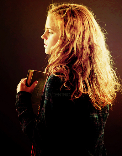 Hermione Granger wallpaper called Hermione Fan Art