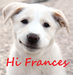 Hi Frances :* - teddybear64 icon