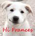 Hi Frances :*