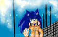 Listen to the music - random-sonic-girls-and-boys photo