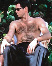 PIERCE BROSNAN SHIRTLESS IN THE THOMAS CROWN AFFAIR.