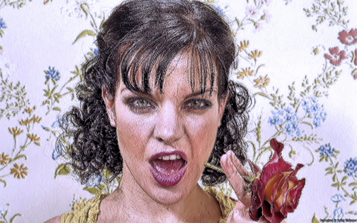 Pauley Perrette wallpaper probably containing a bouquet and a portrait titled Pauley Perrette Wallpaper