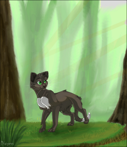 Warriors (Novel Series) Hintergrund possibly with a chihuahua entitled Ravenpaw