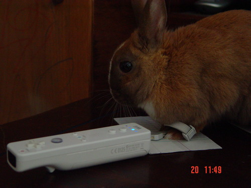 Tribble can play the wii