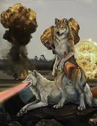 Волки <3