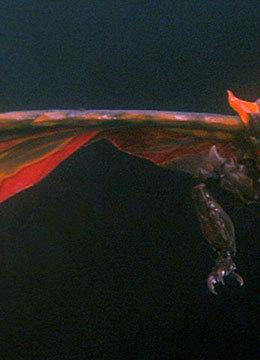 Godzilla achtergrond titled battra