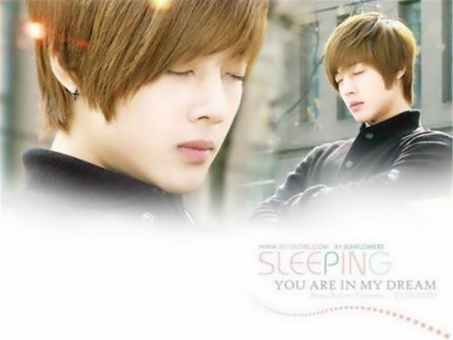 Kim Hyun Joong wallpaper containing a portrait called hyun joong
