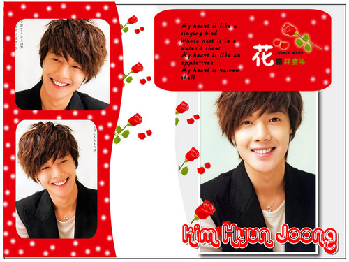 Kim Hyun Joong wallpaper possibly containing a sign called hyun joong