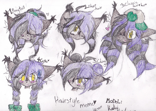 .:Hair Meme:. ~ Kakui The Lynx