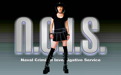Abby ncis (Pauley Perrette) wallpaper