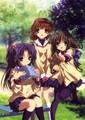 Clannad Girls
