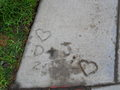 Concrete near my school.... - jemi photo