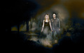tv-couples - Forwood wallpaper