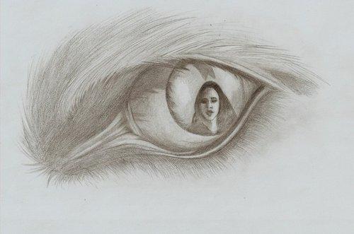 Сумерки (серия романов) Обои entitled Jacob black drawing