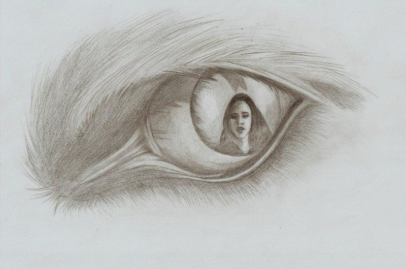 Jacob black drawing