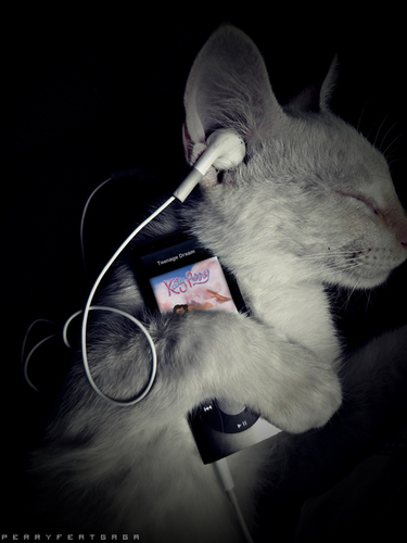 Kitty listening to Katy Perry =D