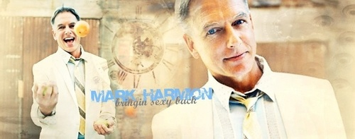 NCIS - Unità anticrimine - Unità anticrimine wallpaper probably with a portrait called Mark Harmon Banner
