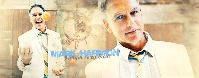 Mark Harmon Banner