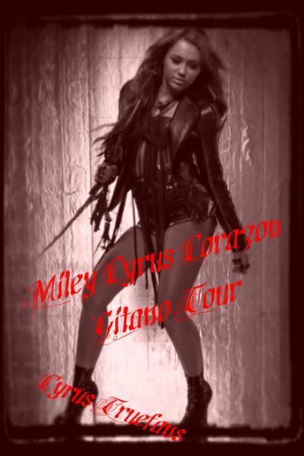 Miley Cyrus Tour Photos-SEXY!!!