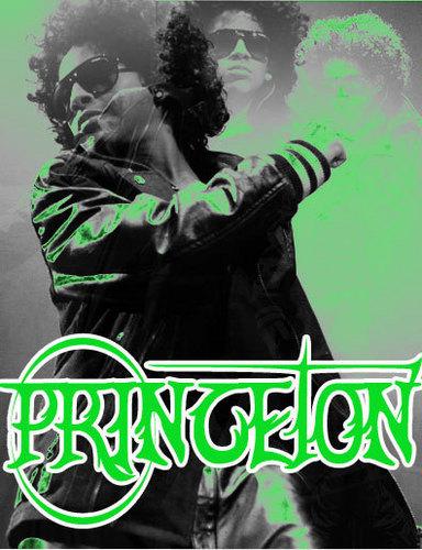 Princeton- Mindless Behavior
