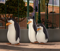 They Look So Sad! :( - penguins-of-madagascar screencap
